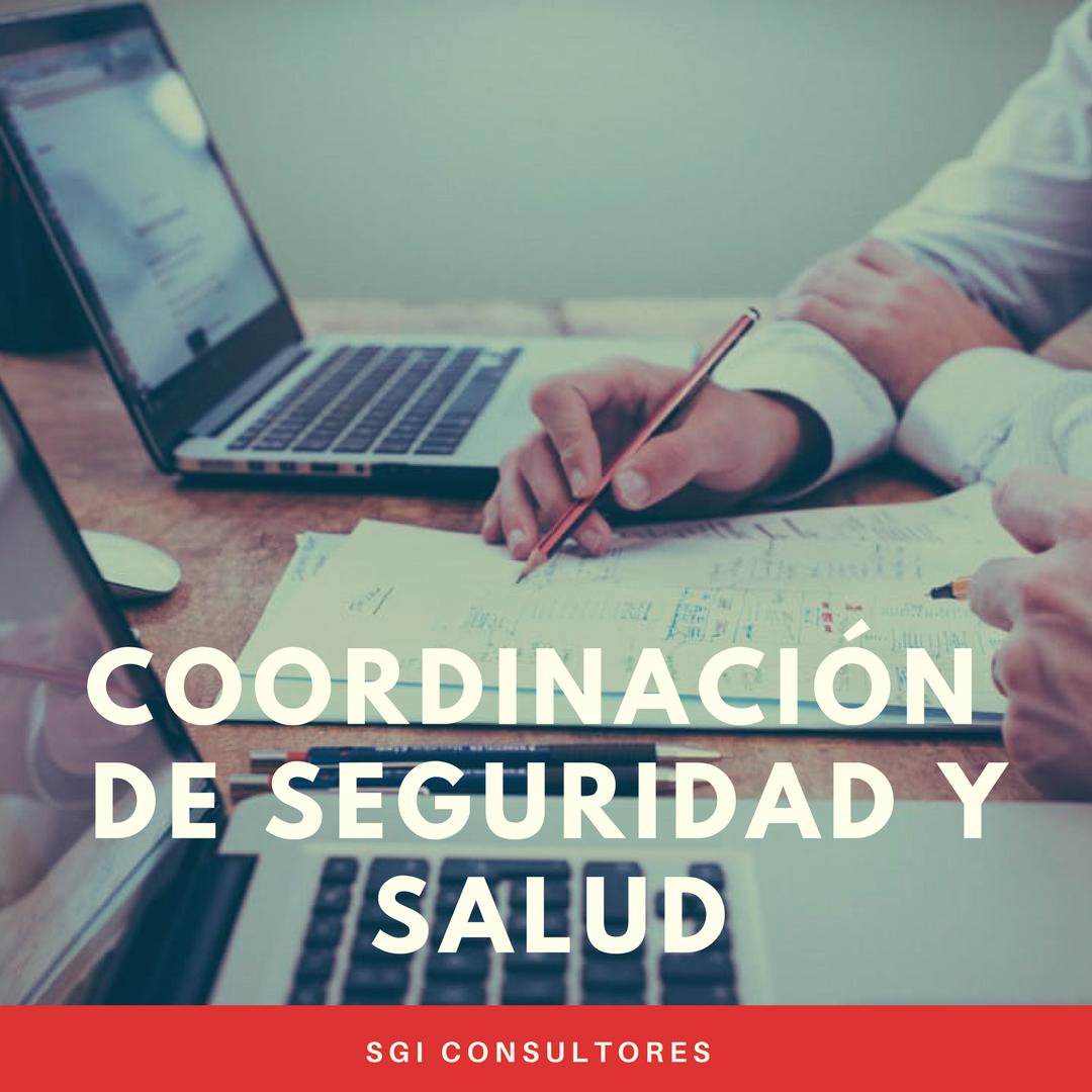 grupo-sgi-servicios-coordinadores